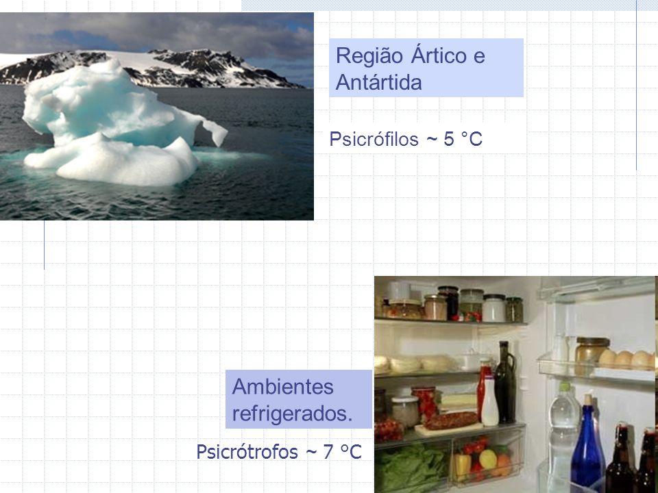 Psicrófilos ~ 5 °C Ambientes refrigerados. Região Ártico e Antártida Psicrótrofos ~ 7 °C