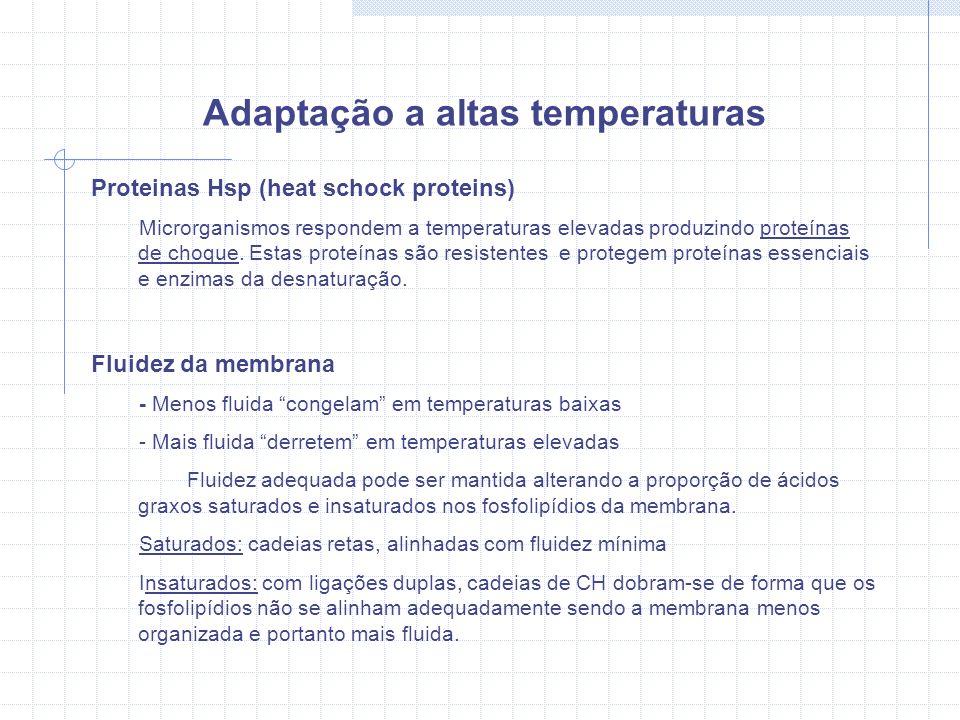 Adaptação a altas temperaturas Proteinas Hsp (heat schock proteins) Microrganismos respondem a temperaturas elevadas produzindo proteínas de choque.