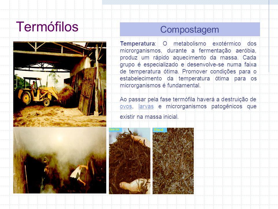 Termófilos Compostagem Temperatura: O metabolismo exotérmico dos microrganismos, durante a fermentação aeróbia, produz um rápido aquecimento da massa.