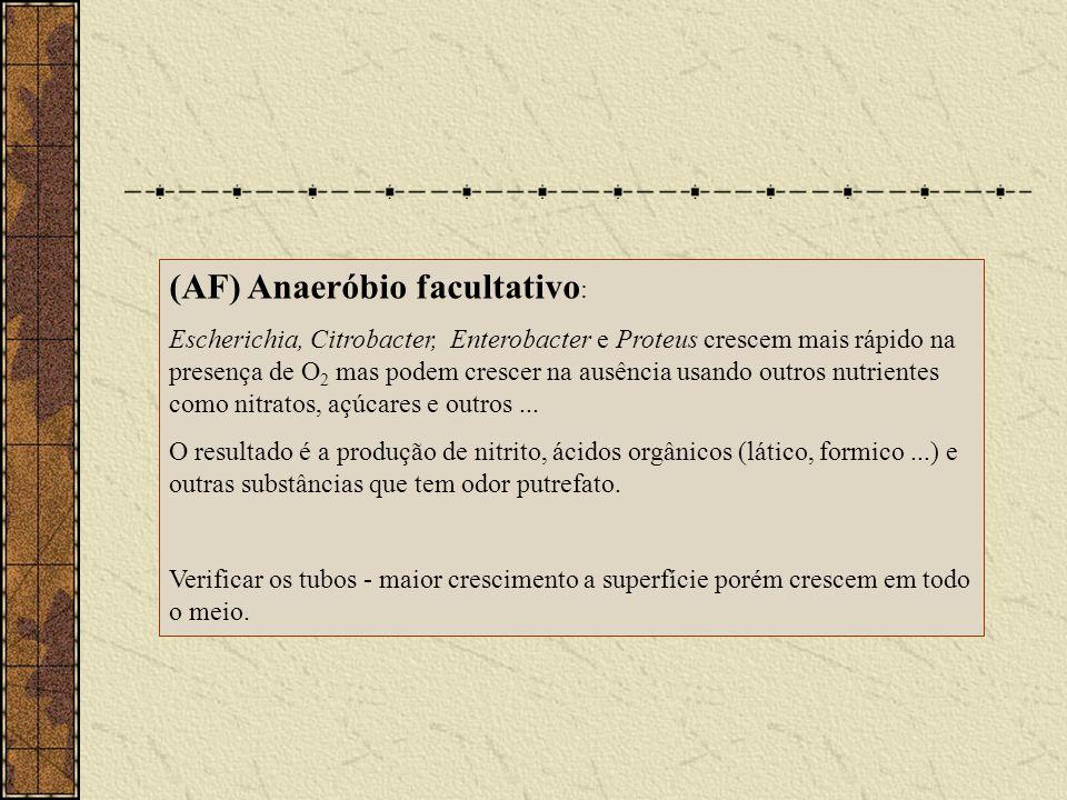 (AF) Anaeróbio facultativo : Escherichia, Citrobacter, Enterobacter e Proteus crescem mais rápido na presença de O 2 mas podem crescer na ausência usa