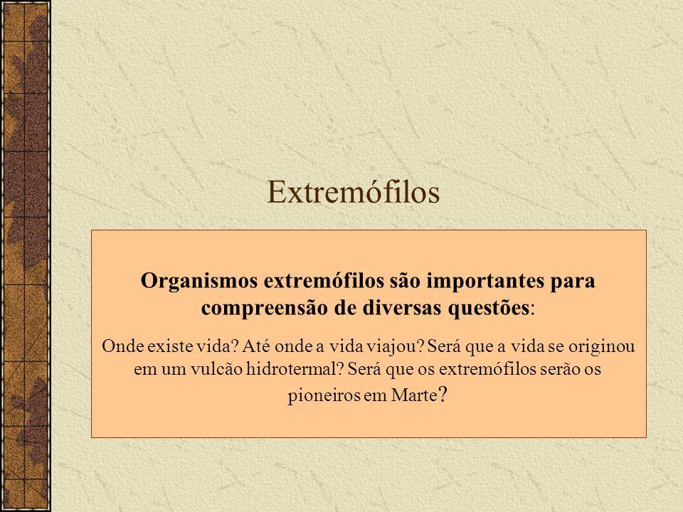 Extremófilos Organismos extremófilos são importantes para compreensão de diversas questões: Onde existe vida? Até onde a vida viajou? Será que a vida
