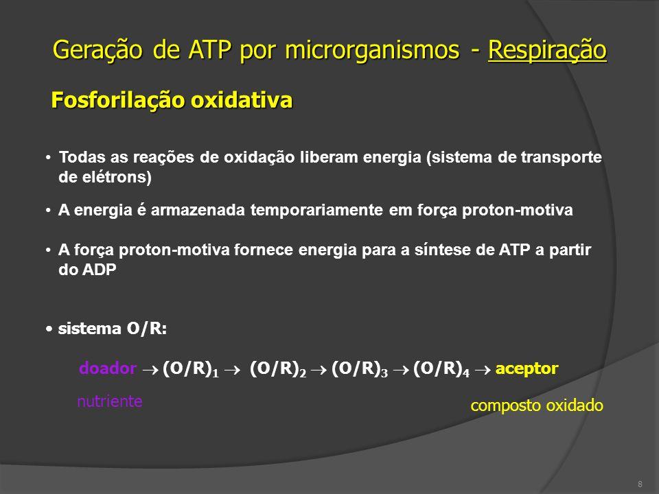 Fermentação Ausência de O 2 Reações de oxidação e redução de um composto orgânico Baixo potencial de energia (processo pouco eficiente) Ocorre fosforilação em nível de substrato Ocorre no citosol 19