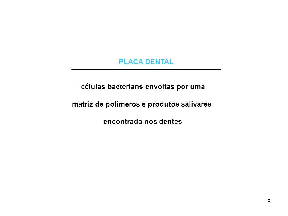 A placa dental Bactérias colonizam a superfície dos dentes graças a um filme orgânico fino resultante da ligação com glicoproteínas ácidas da saliva Streptococcus mutans Streptococcus sobrinus Streptococcus sanguis Streptococcus mitis 9 Fusobacterium Actinomyces