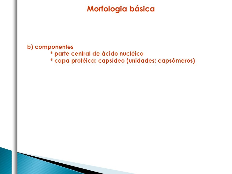 b) componentes * parte central de ácido nucléico * capa protéica: capsídeo (unidades: capsômeros) Morfologia básica