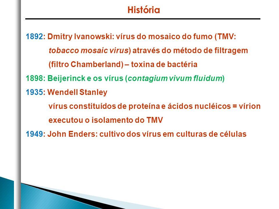 1892: Dmitry Ivanowski: vírus do mosaico do fumo (TMV: tobacco mosaic virus) através do método de filtragem (filtro Chamberland) – toxina de bactéria