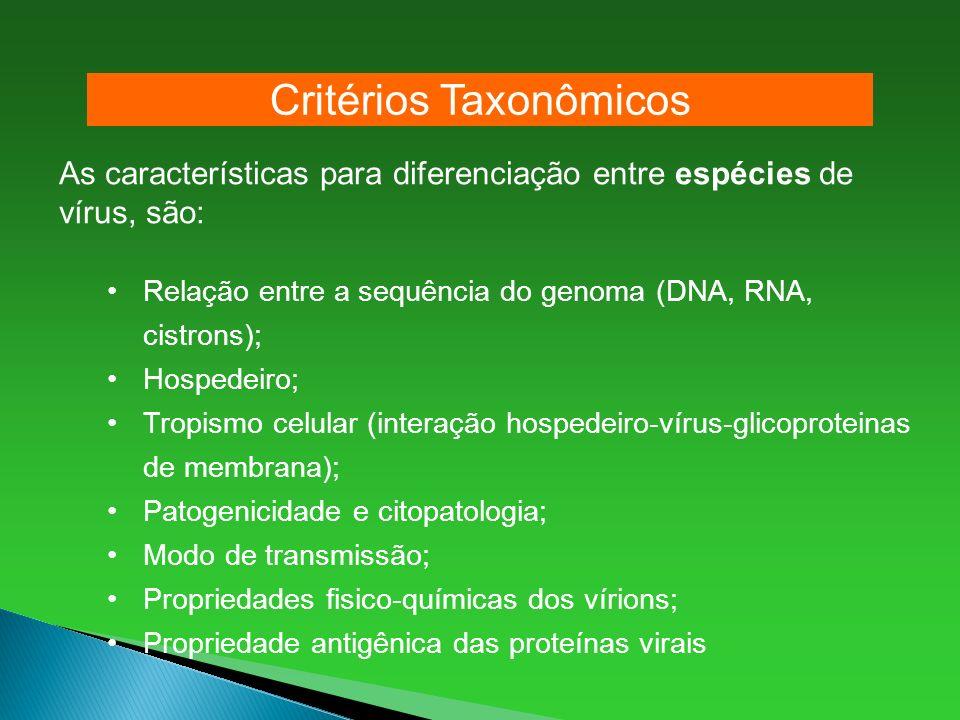 As características para diferenciação entre espécies de vírus, são: Relação entre a sequência do genoma (DNA, RNA, cistrons); Hospedeiro; Tropismo cel