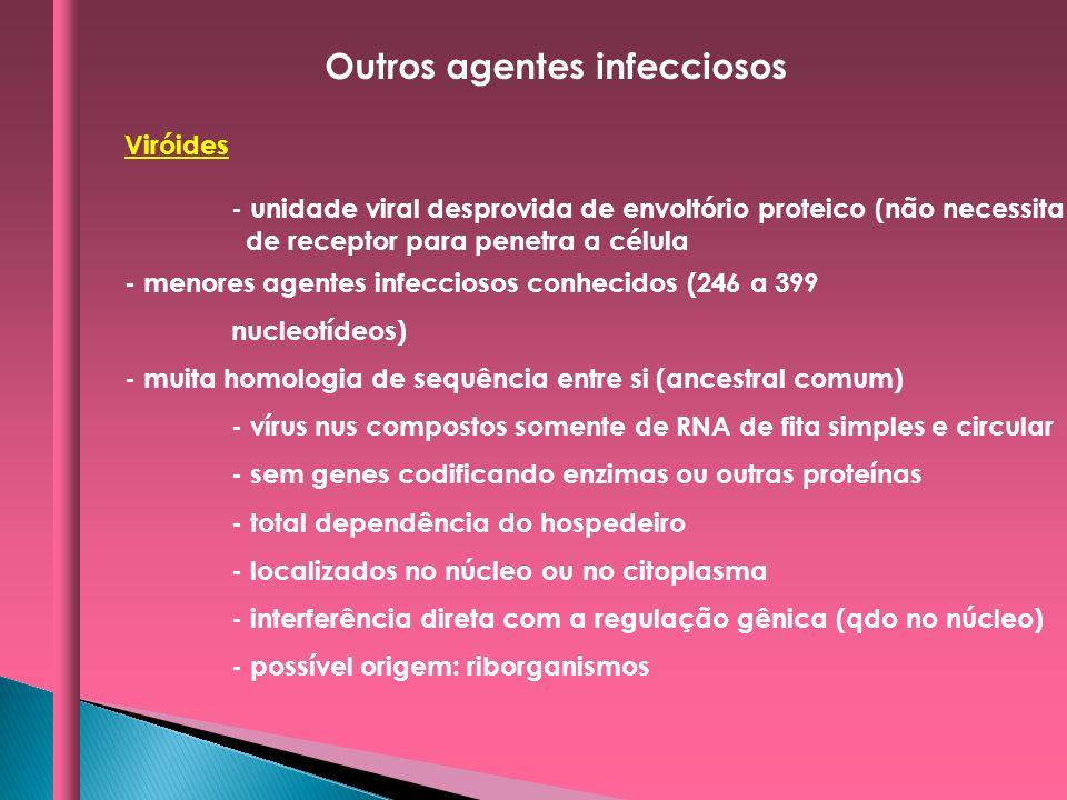 Viróides - unidade viral desprovida de envoltório proteico (não necessita de receptor para penetra a célula - menores agentes infecciosos conhecidos (