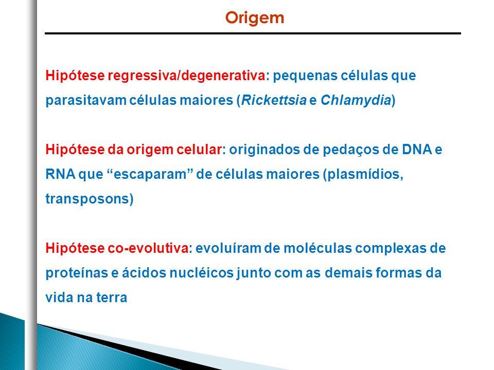 * São entidades infecciosas não celulares (acelulares) cujos genomas são constituídos de DNA ou RNA * Não são organismos vivos, replicação somente no interior de células vivas – necessita, portanto, de uma célula hospedeira * Usam sistemas de produção de energia e biossíntese do hospedeiro para sintetizar cópias e transferir seu genoma para outras células * Podem ser intra ou extracelulares Definição