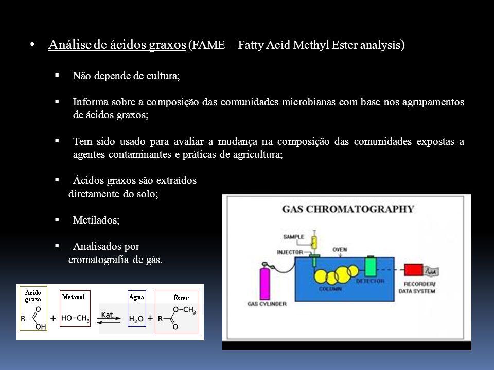 Análise de ácidos graxos (FAME – Fatty Acid Methyl Ester analysis ) Não depende de cultura; Informa sobre a composição das comunidades microbianas com
