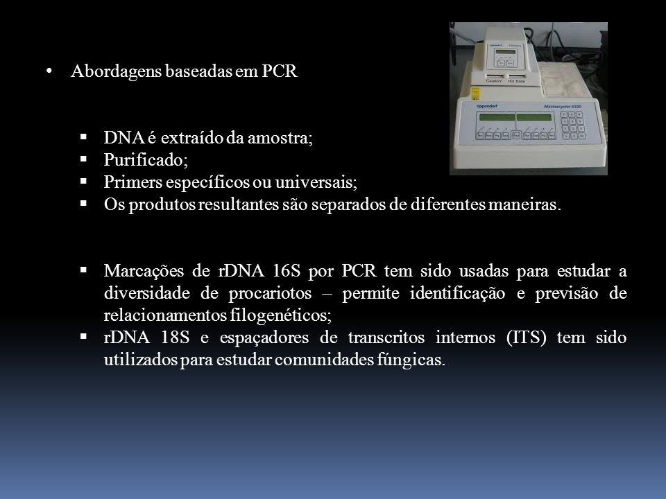 Abordagens baseadas em PCR DNA é extraído da amostra; Purificado; Primers específicos ou universais; Os produtos resultantes são separados de diferent