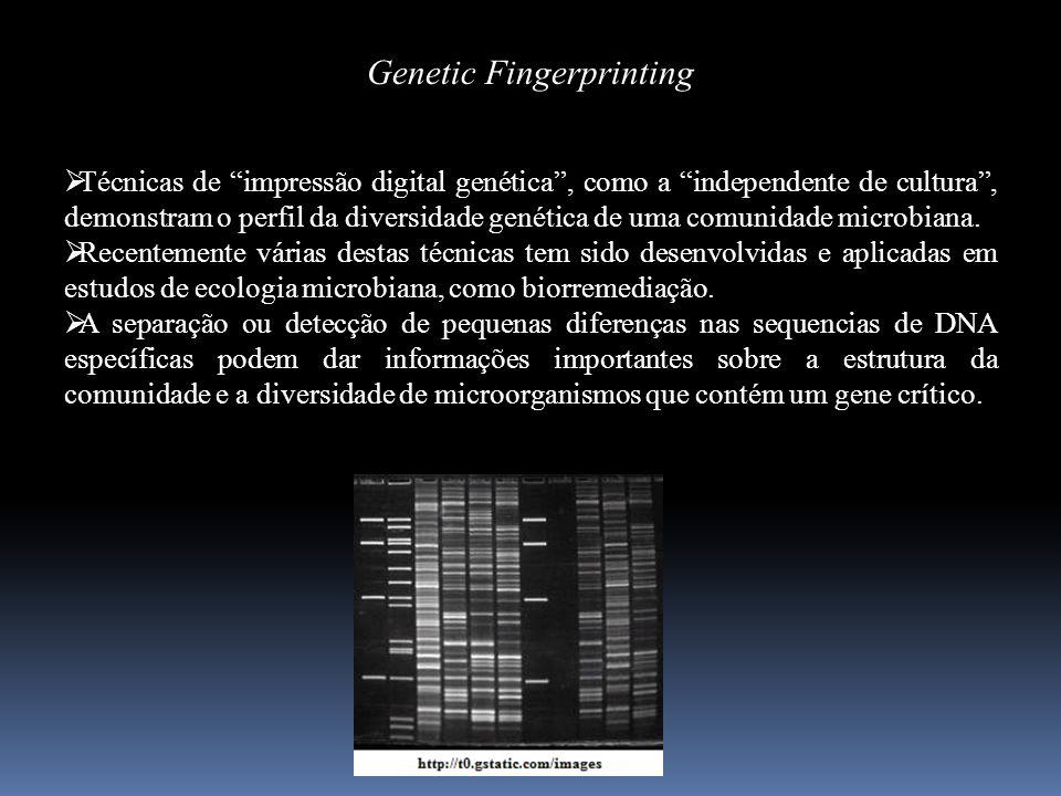 Genetic Fingerprinting Técnicas de impressão digital genética, como a independente de cultura, demonstram o perfil da diversidade genética de uma comu