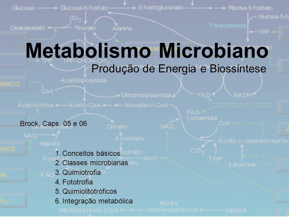 Metabolismo Microbiano 1.Conceitos básicos 2.Classes microbianas 3.Quimiotrofia 4.Fototrofia 5.Quimiolitotróficos 6.Integração metabólica Produção de