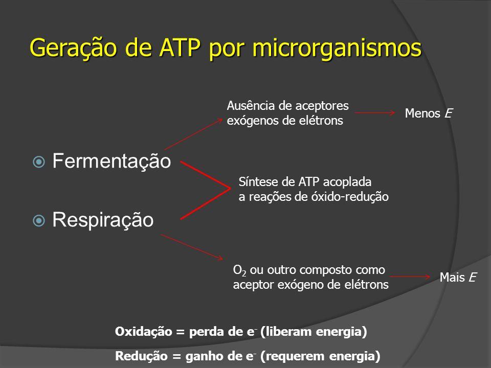 Fermentação Respiração Geração de ATP por microrganismos Síntese de ATP acoplada a reações de óxido-redução Ausência de aceptores exógenos de elétrons