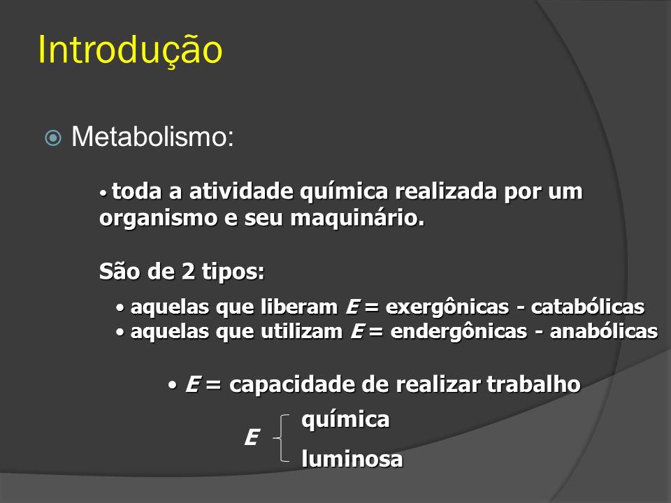 Introdução Metabolismo: toda a atividade química realizada por um organismo e seu maquinário. toda a atividade química realizada por um organismo e se
