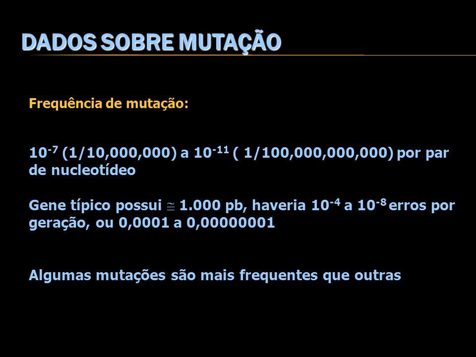 DADOS SOBRE MUTAÇÃO Frequência de mutação: 10 -7 (1/10,000,000) a 10 -11 ( 1/100,000,000,000) por par de nucleotídeo Gene típico possui 1.000 pb, have