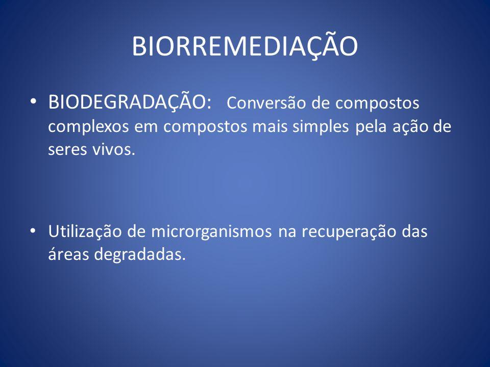 BIORREMEDIAÇÃO BIODEGRADAÇÃO: Conversão de compostos complexos em compostos mais simples pela ação de seres vivos. Utilização de microrganismos na rec