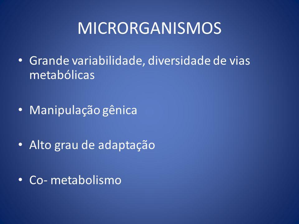 MICRORGANISMOS Grande variabilidade, diversidade de vias metabólicas Manipulação gênica Alto grau de adaptação Co- metabolismo