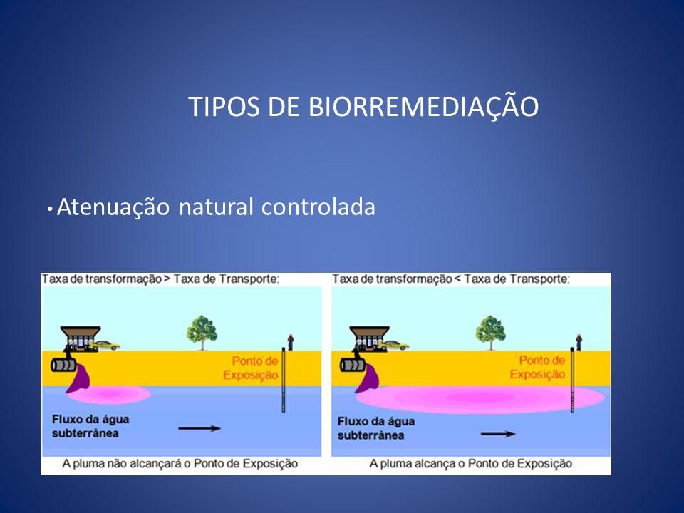 TIPOS DE BIORREMEDIAÇÃO Atenuação natural controlada