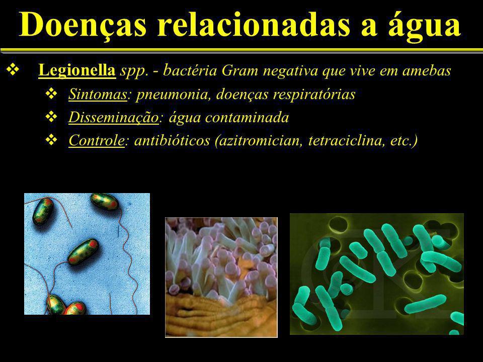 Doenças relacionadas a água Legionella spp.