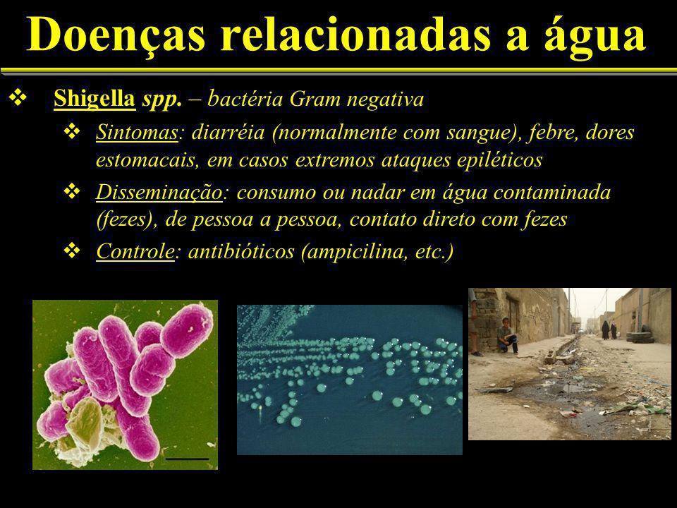 Doenças relacionadas a água Shigella spp.