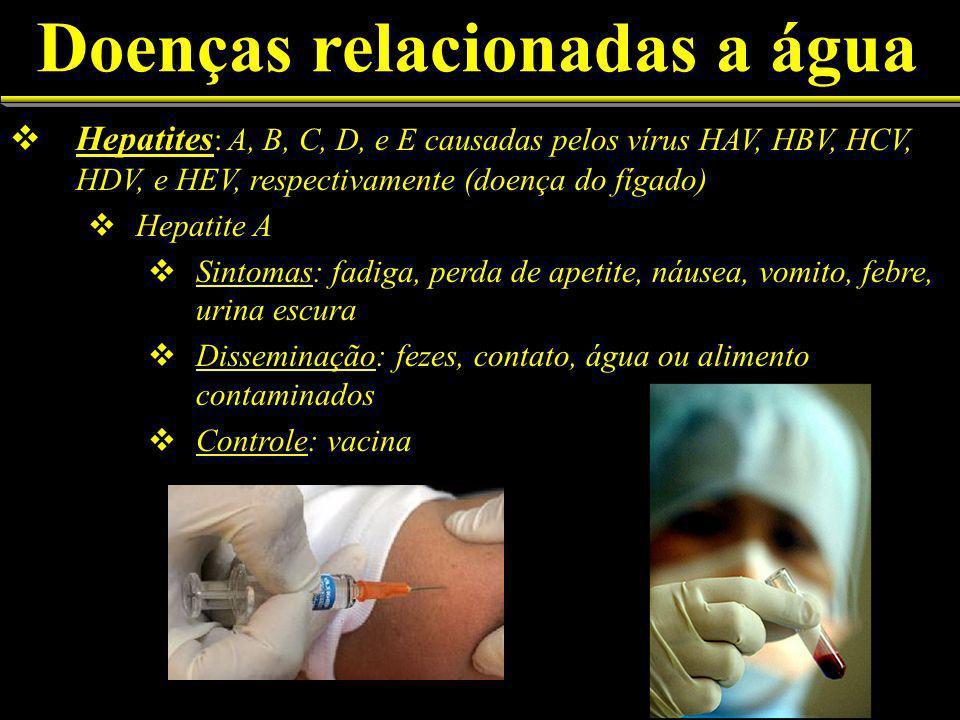 Doenças relacionadas a água Hepatites : A, B, C, D, e E causadas pelos vírus HAV, HBV, HCV, HDV, e HEV, respectivamente (doença do fígado) Hepatite A Sintomas: fadiga, perda de apetite, náusea, vomito, febre, urina escura Disseminação: fezes, contato, água ou alimento contaminados Controle: vacina