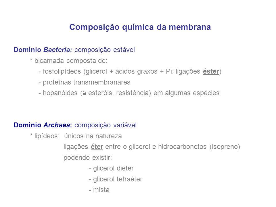 Composição química da membrana Domínio Bacteria: composição estável * bicamada composta de: - fosfolipídeos (glicerol + ácidos graxos + Pi: ligações é