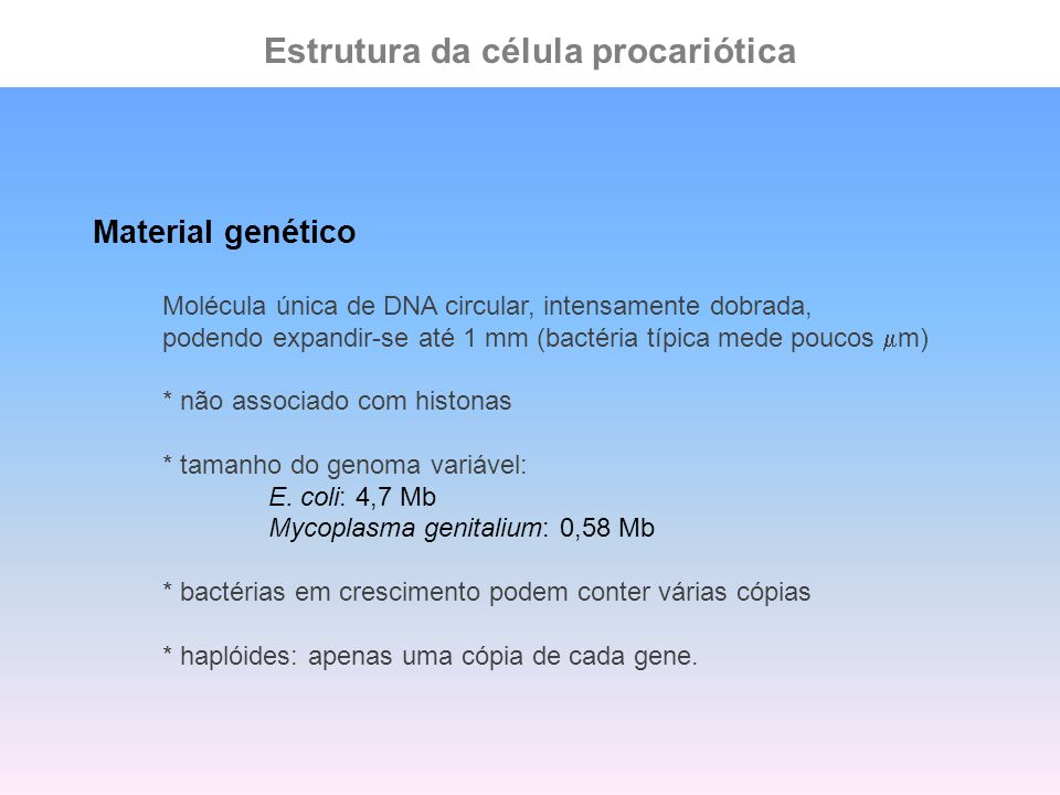 Estrutura da célula procariótica Material genético Molécula única de DNA circular, intensamente dobrada, podendo expandir-se até 1 mm (bactéria típica
