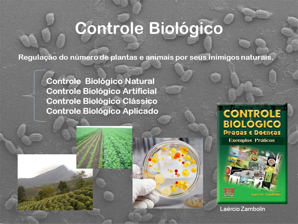 Regulação do número de plantas e animais por seus inimigos naturais. Controle Biológico Controle Biológico Natural Controle Biológico Artificial Contr
