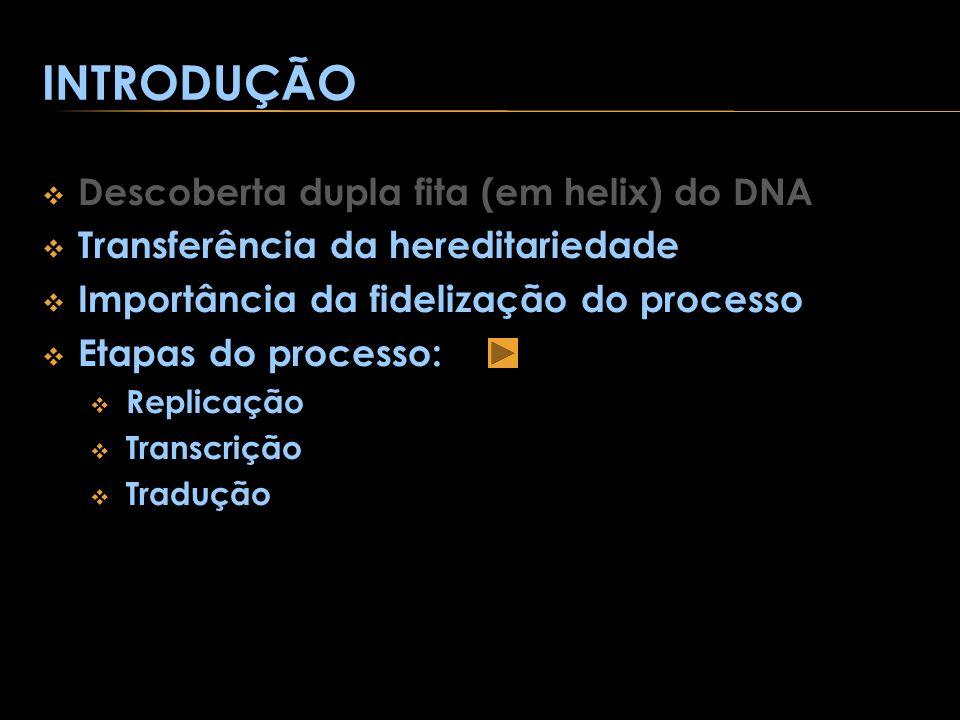 INTRODUÇÃO Descoberta dupla fita (em helix) do DNA Transferência da hereditariedade Importância da fidelização do processo Etapas do processo: Replica