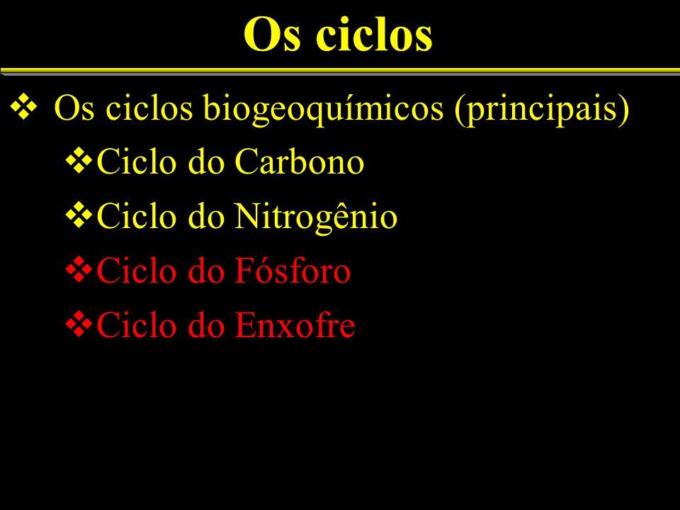 Os ciclos Os ciclos biogeoquímicos (principais) Ciclo do Carbono Ciclo do Nitrogênio Ciclo do Fósforo Ciclo do Enxofre