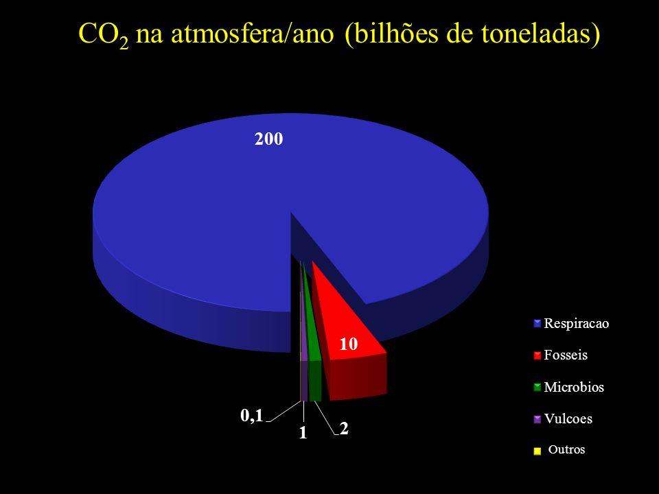 CO 2 na atmosfera/ano (bilhões de toneladas) Outros