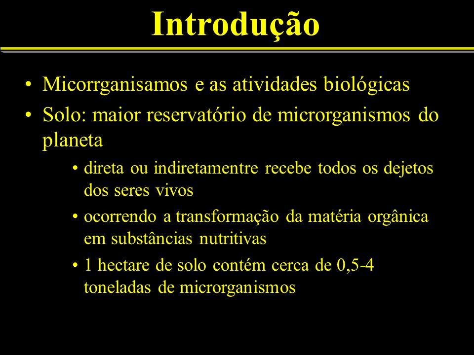 Introdução Micorrganisamos e as atividades biológicas Solo: maior reservatório de microrganismos do planeta direta ou indiretamentre recebe todos os d