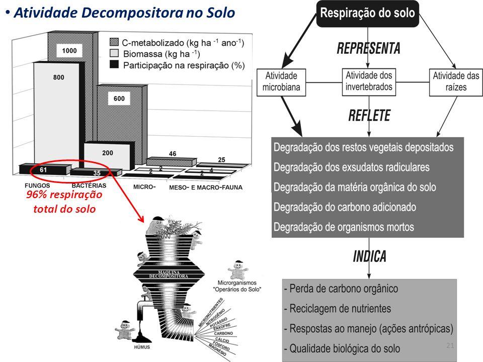 Atividade Decompositora no Solo 96% respiração total do solo 21