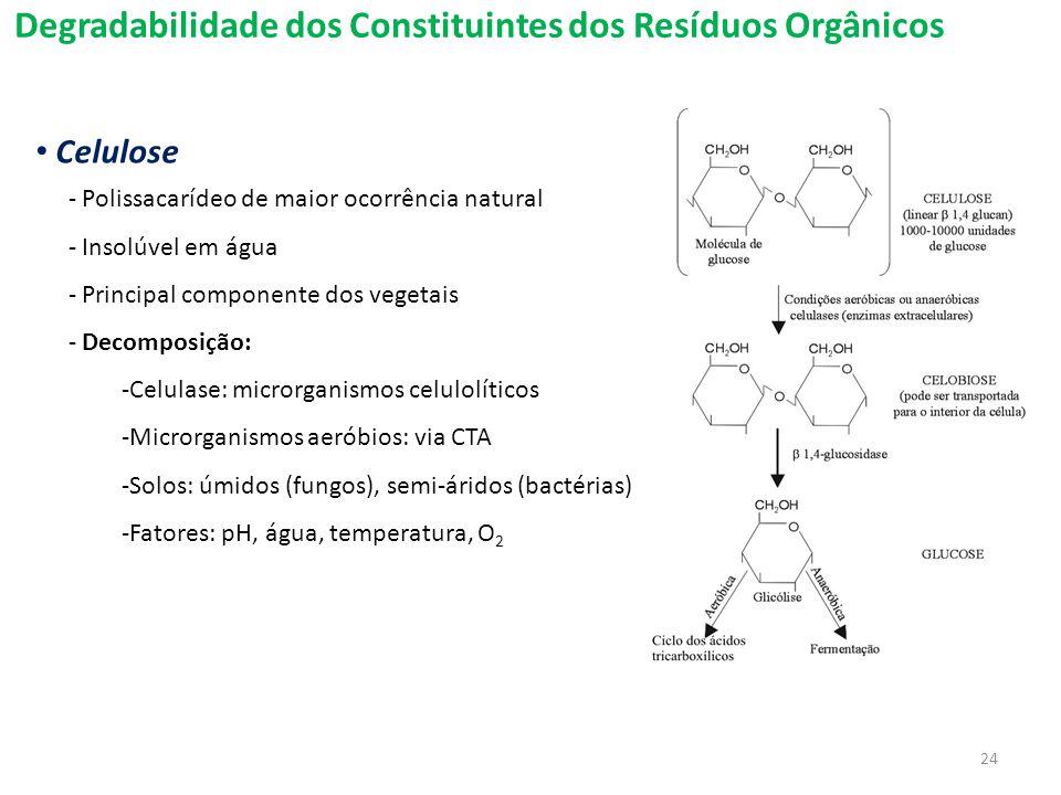 Degradabilidade dos Constituintes dos Resíduos Orgânicos Celulose - Polissacarídeo de maior ocorrência natural - Insolúvel em água - Principal compone