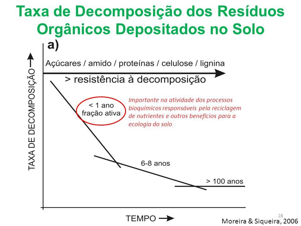 Importante na atividade dos processos bioquímicos responsáveis pela reciclagem de nutrientes e outros benefícios para a ecologia do solo Taxa de Decom