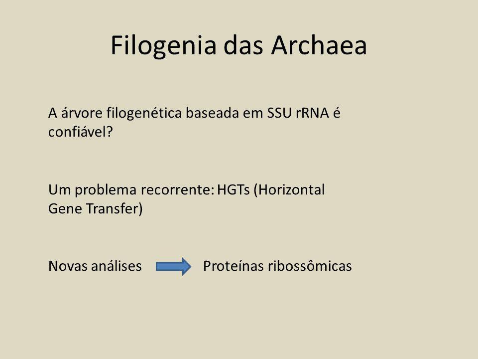 Filogenia das Archaea A árvore filogenética baseada em SSU rRNA é confiável.