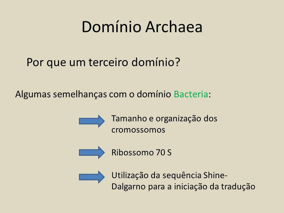 Domínio Archaea Por que um terceiro domínio.