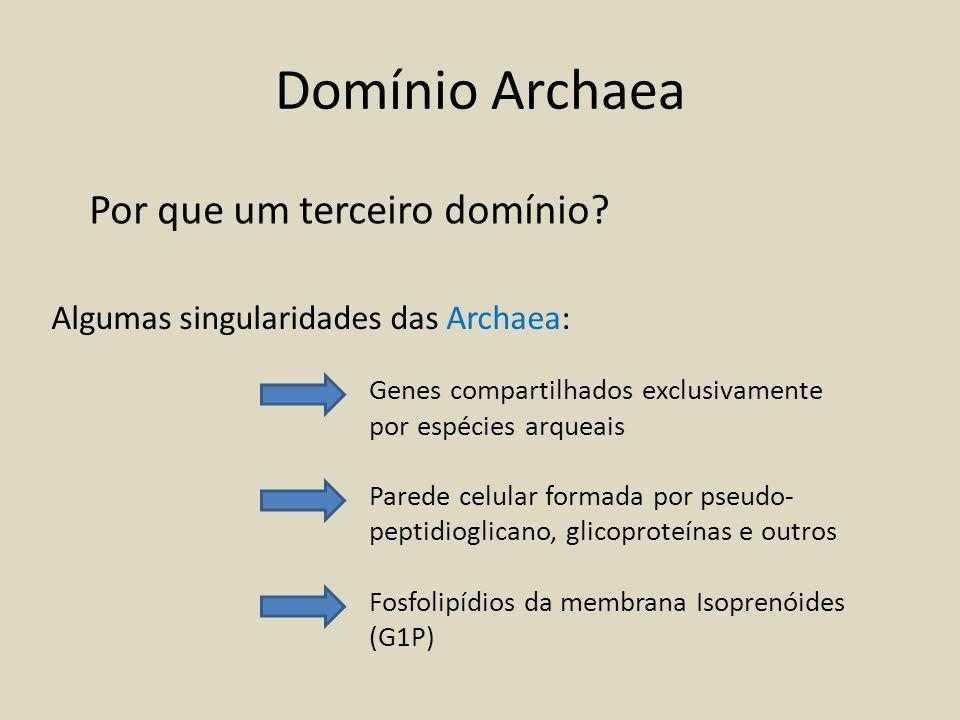 Características das Archaea Principalmente formado por organismos extremófilos.