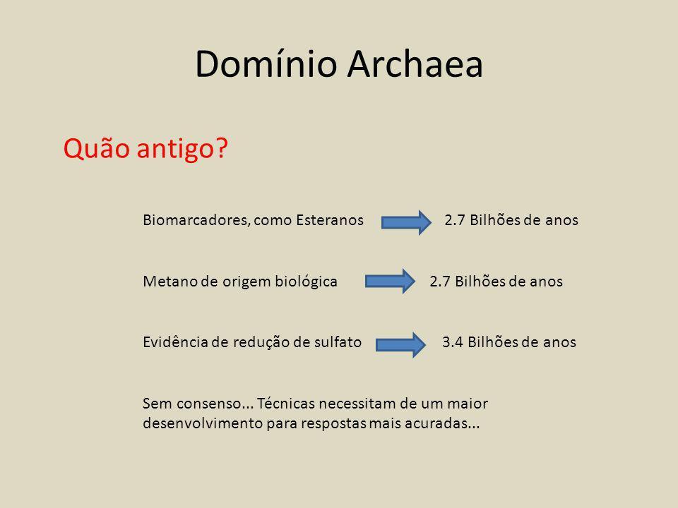 Domínio Archaea Quão antigo.