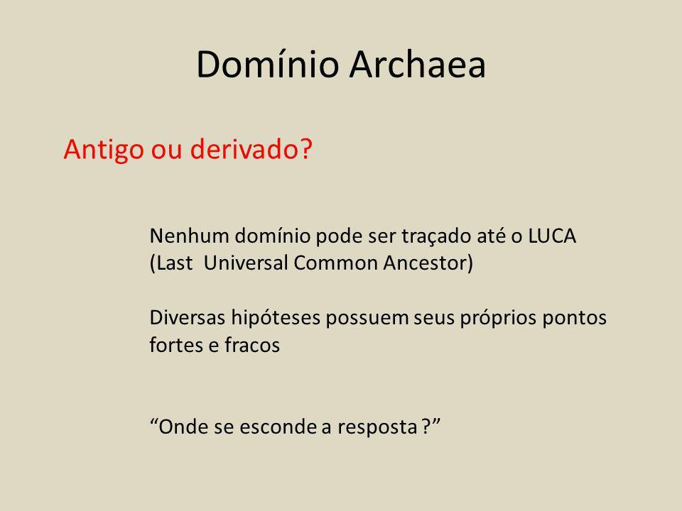 Domínio Archaea Antigo ou derivado.