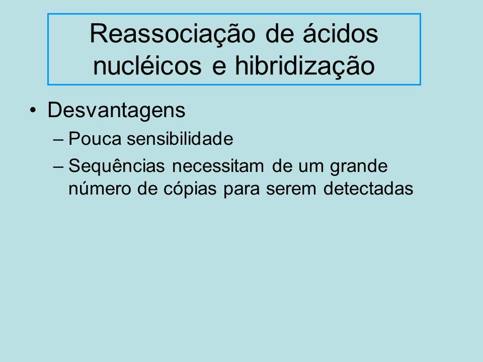 Desvantagens –Pouca sensibilidade –Sequências necessitam de um grande número de cópias para serem detectadas Reassociação de ácidos nucléicos e hibrid
