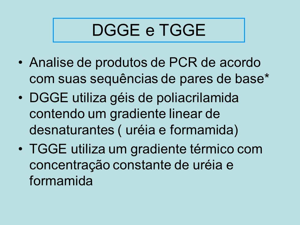 Analise de produtos de PCR de acordo com suas sequências de pares de base* DGGE utiliza géis de poliacrilamida contendo um gradiente linear de desnatu