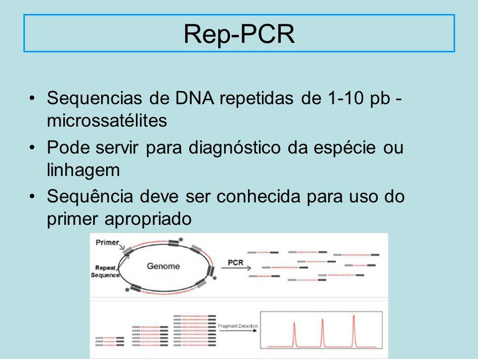 Sequencias de DNA repetidas de 1-10 pb - microssatélites Pode servir para diagnóstico da espécie ou linhagem Sequência deve ser conhecida para uso do