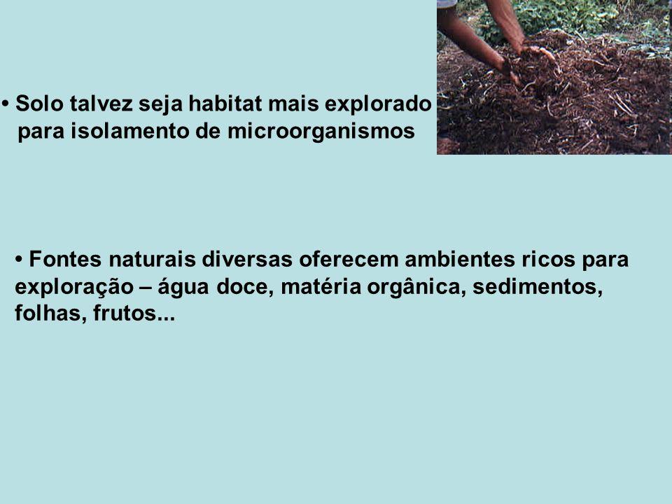 Solo talvez seja habitat mais explorado para isolamento de microorganismos Fontes naturais diversas oferecem ambientes ricos para exploração – água do