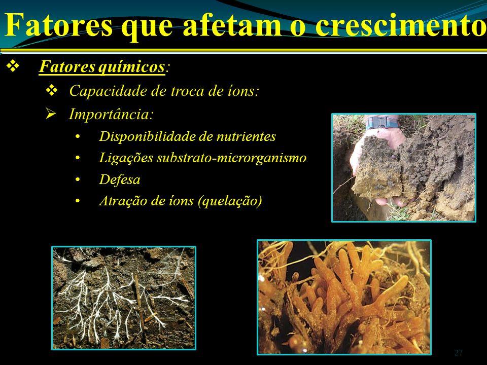 Fatores que afetam o crescimento Fatores químicos: Capacidade de troca de íons: Importância: Disponibilidade de nutrientes Ligações substrato-microrga