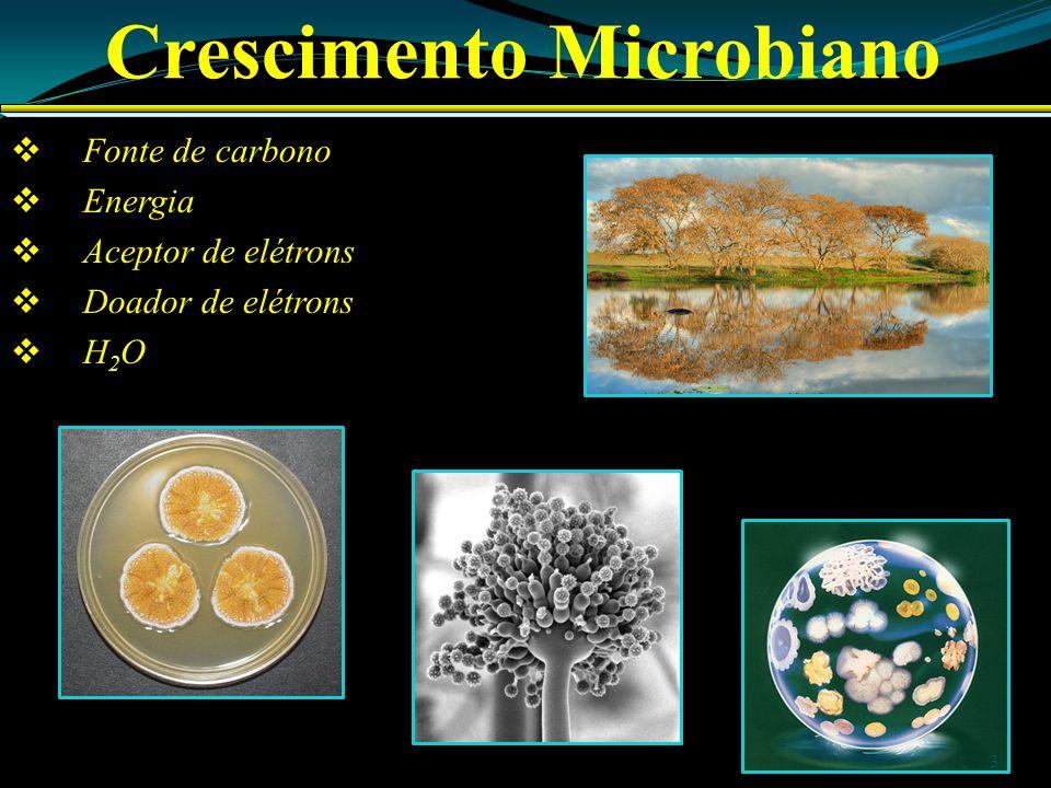 Crescimento Microbiano Fonte de carbono Energia Aceptor de elétrons Doador de elétrons H 2 O 3