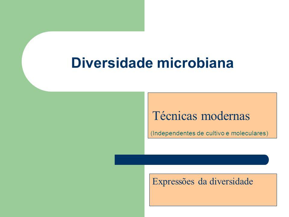 Diversidade microbiana (Independentes de cultivo e moleculares) Técnicas modernas Expressões da diversidade
