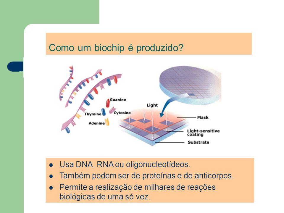 Como um biochip é produzido? Usa DNA, RNA ou oligonucleotídeos. Também podem ser de proteínas e de anticorpos. Permite a realização de milhares de rea