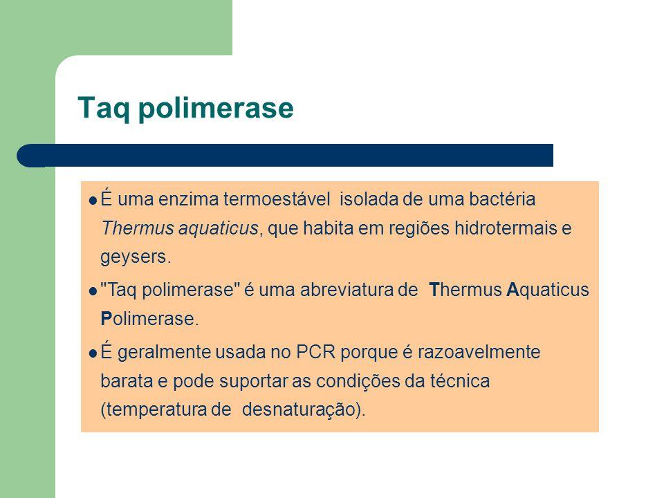 Taq polimerase É uma enzima termoestável isolada de uma bactéria Thermus aquaticus, que habita em regiões hidrotermais e geysers.