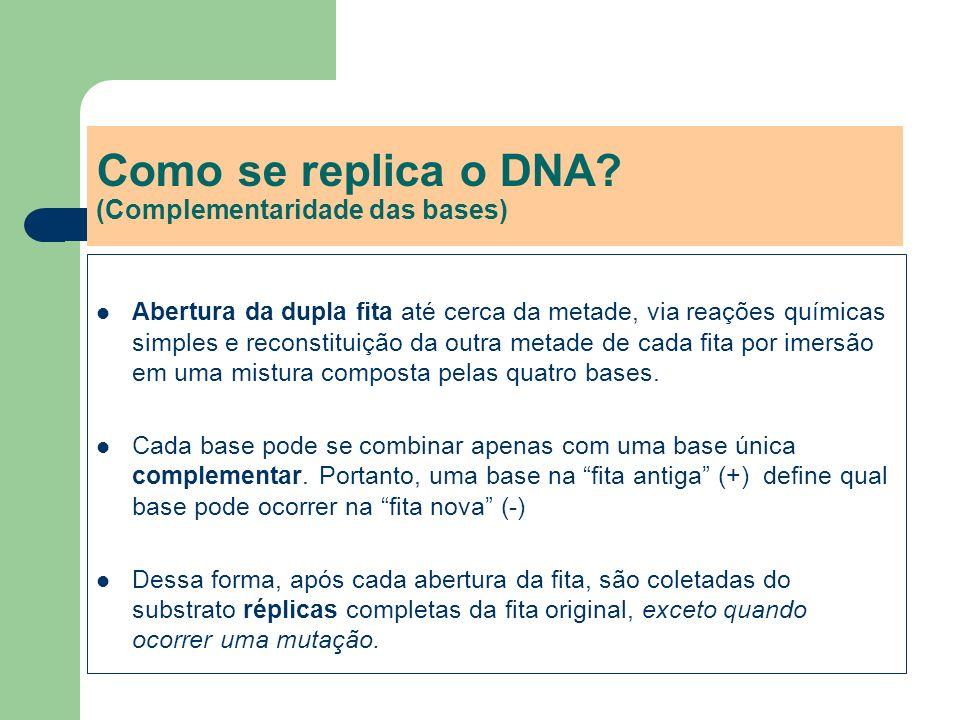 Como se replica o DNA? (Complementaridade das bases) Abertura da dupla fita até cerca da metade, via reações químicas simples e reconstituição da outr